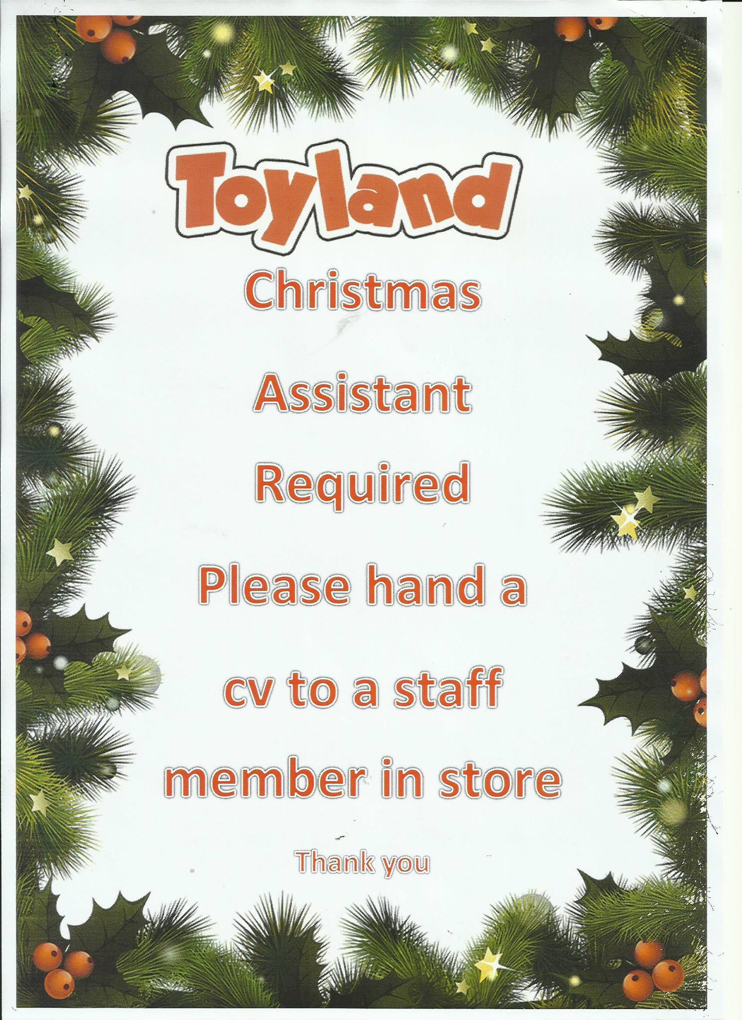 2x Christmas Assistants required at Toyland